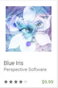 BlueIris_app